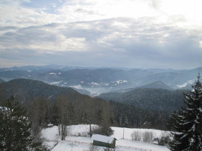 Proprietati de schi in Pamporovo
