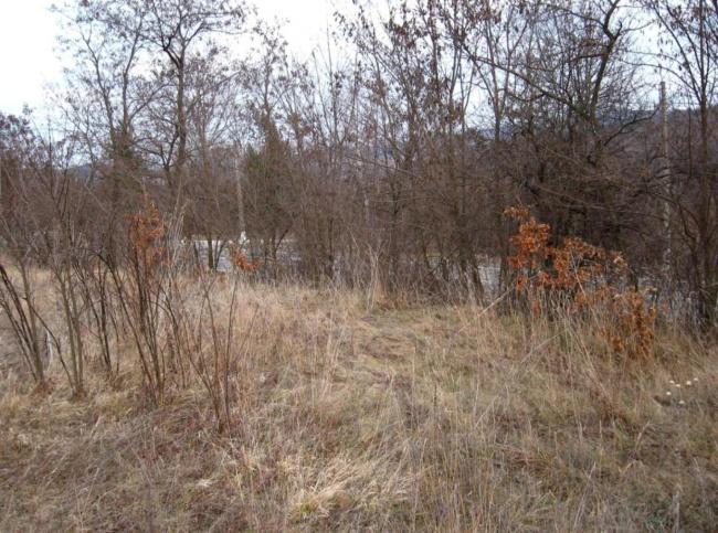 Teren de vanzare pe drumul principal intre Dryanovo si Gabrovo